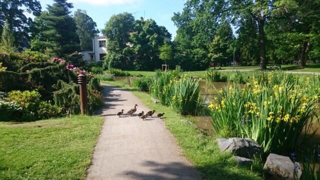 Pilgrim i Parken
