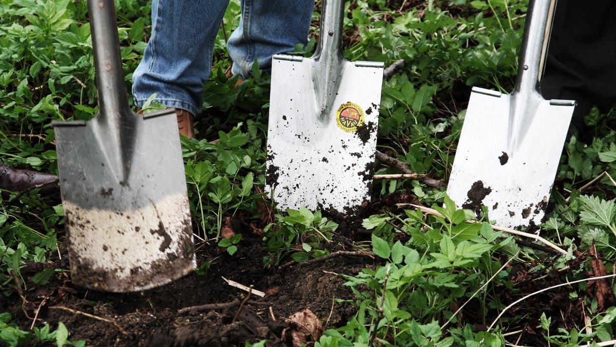 Spadar i trädsgårdsland