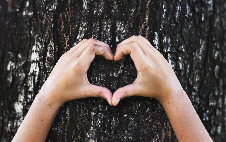 Händer formar ett hjärta