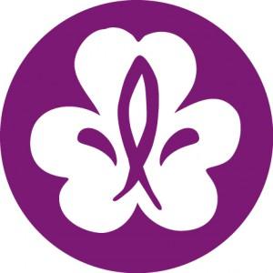 Scoutläger vid Ödegården