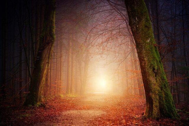 Gud är ljus!