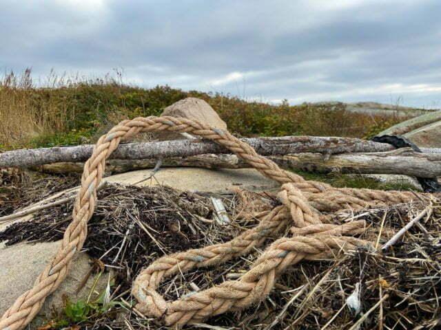 Närbild på rep och alger bland klippor