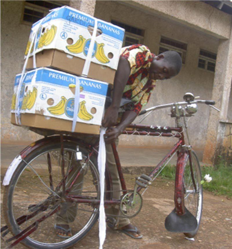 Bananlådor på en cykel