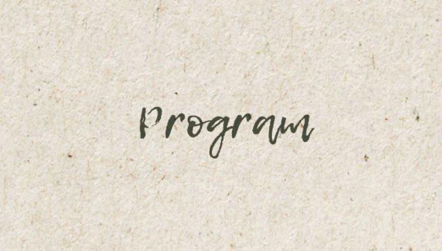 Länkplatta - Program