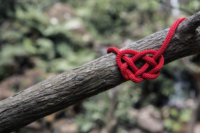 Rep som formar ett hjärta
