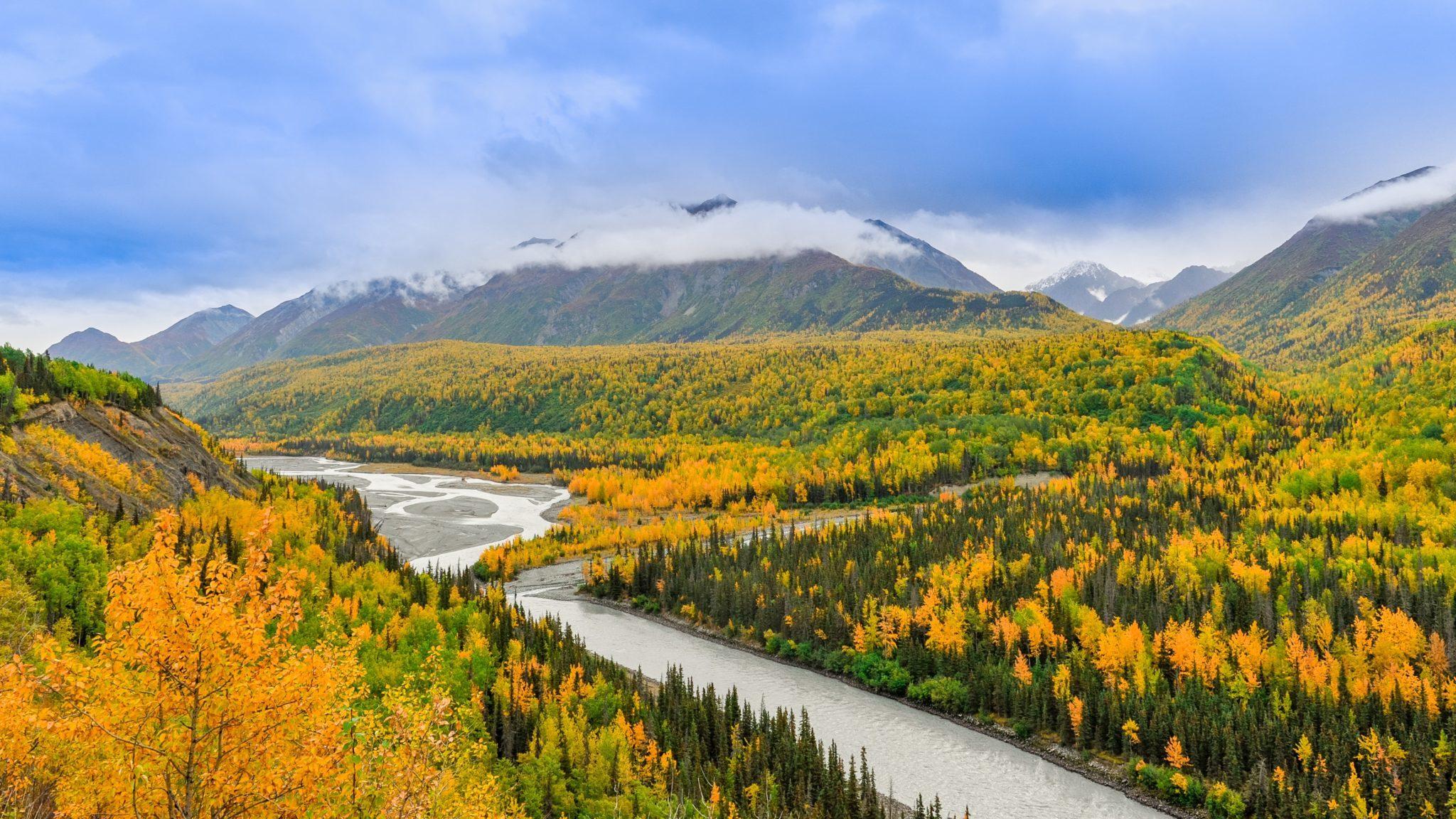 Utsikt över öppet landskap och berg i Alaska