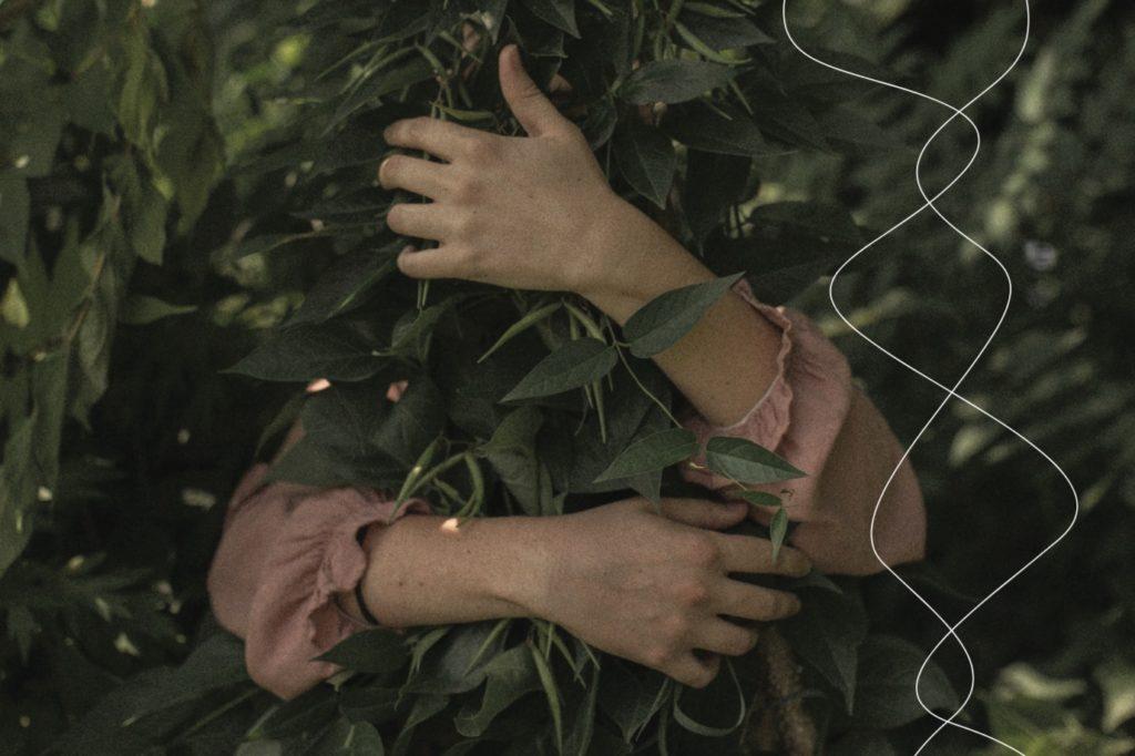Händer som kramar en växt.