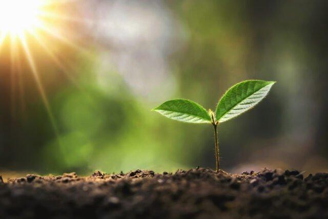 När, var och hur – En inspirerande dag om församlingsplantering