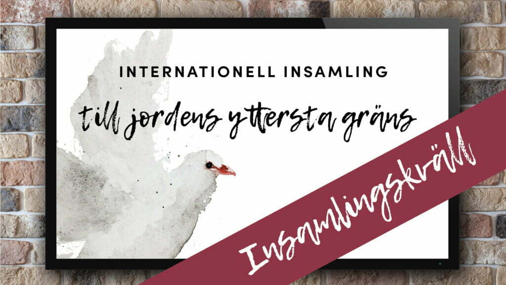 Internationell Insamlingskväll