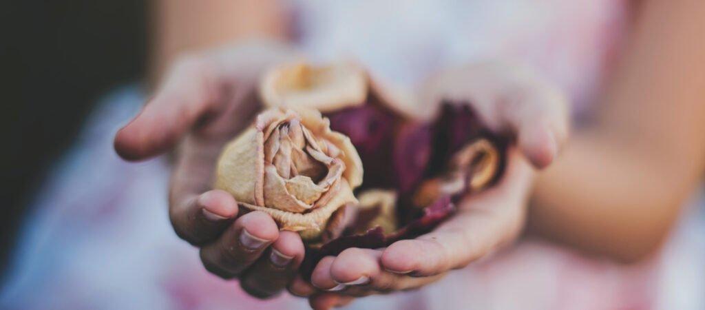 Flicka som håller fram blommor i kupade händer