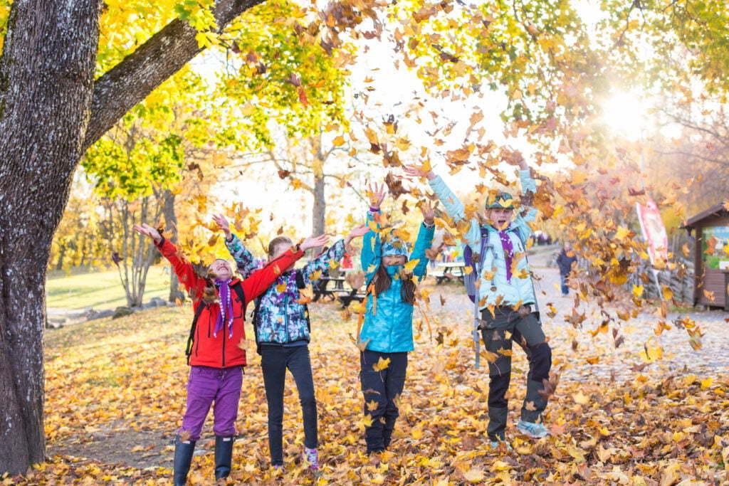 Bild på scouter som kastar löv